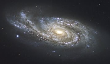 Typical Spiral Shaped Galaxy